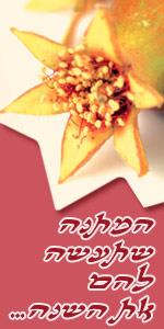 roshhashana2007_150x300
